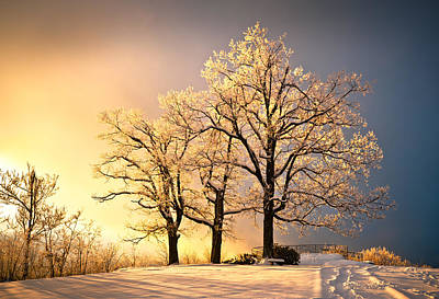 Footprints Photograph - Luminous - Blue Ridge Winter Sunset by Dave Allen