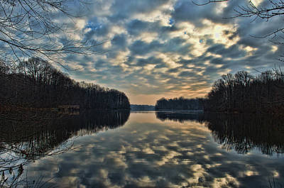Lums Pond Reflected Print by Donna Harding