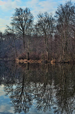 Lums Pond Tree Reflections Print by Donna Harding