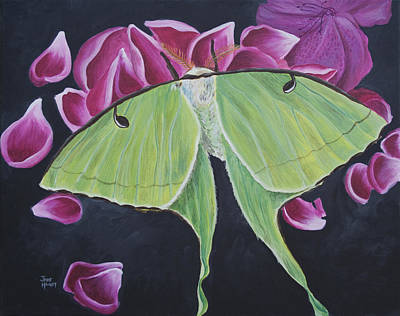 Southern Indiana Painting - Luna Moth by Jaime Haney