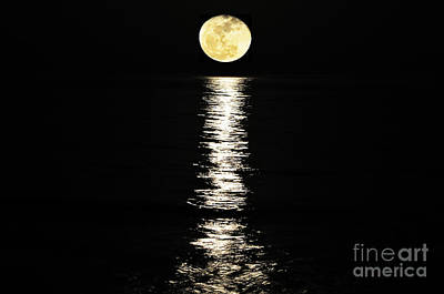 East Coast Photograph - Lunar Lane by Al Powell Photography USA