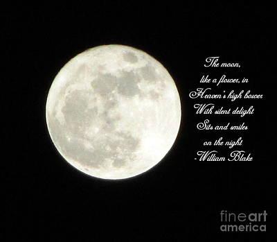 Lunar Verse Print by Avis  Noelle