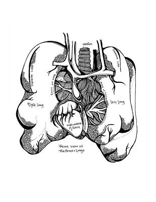 Lungs Print by Jody Pham