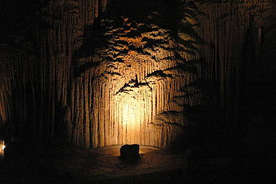 Luray Caverns - 121288 Print by DC Photographer