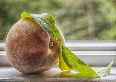 Luscious Peach Print by Terry Rowe
