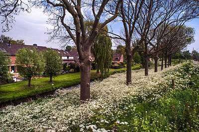 Spring Scenes Photograph - Luscious Spring Bloom In Holland by Jenny Rainbow