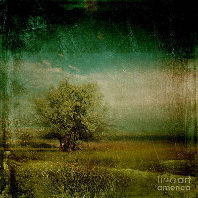 Dramatic Digital Art - Lyrical Tree - 0109bt1e3 by Variance Collections