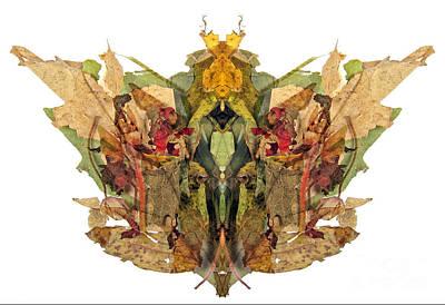 M Green Print by Luc Bovet