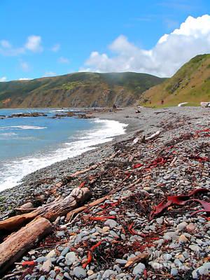 New Zealand Photograph - Macra Beach  by Amber Nissen