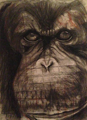 Orangutan Drawing - Mad Ape by Leanne Blackwell