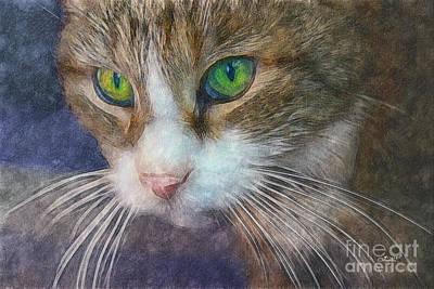 Pets Art Digital Art - Magic Eyes by Jutta Maria Pusl
