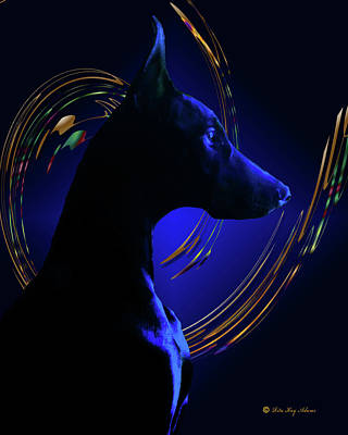 Doberman Photograph - Magnificent Blue by Rita Kay Adams