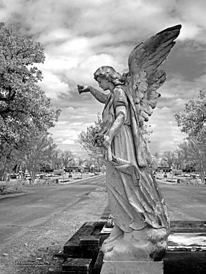 Magnolia Cemetery In Mobile Alabama Print by Terry Reynoldson