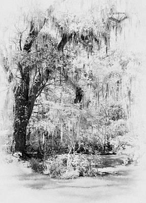 Magnolia Garden Path Print by Sharon M Connolly