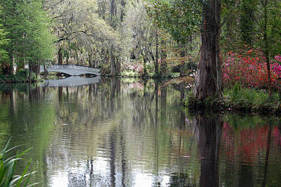 Plantation Photograph - Magnolia Plantation Gardens Series II by Suzanne Gaff