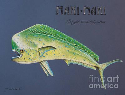 Mahi-mahi Original by Katharina Filus