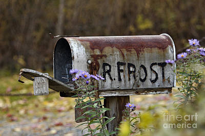 Mail For R Frost - D005926 Print by Daniel Dempster