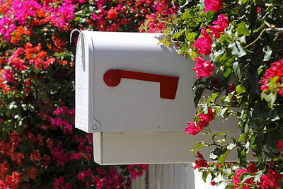 Mail Box Photograph - Mailbox by Rudy Umans