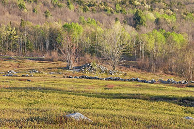 Maine Blueberry Field In Spring Print by Keith Webber Jr