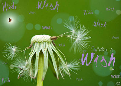 Hope Digital Art - Make A Wish Card by Lisa Knechtel