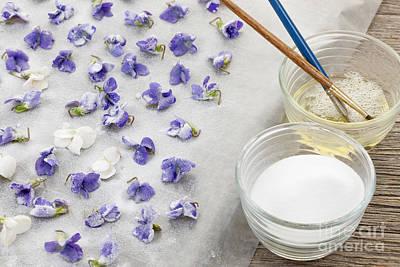 Violet Photograph - Making Candied Violets by Elena Elisseeva