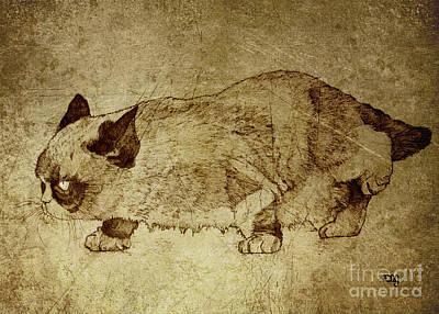 Purebred Drawing - Male Cat Hunts At Night by Daniel Yakubovich