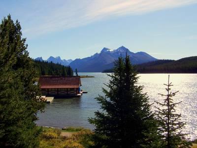 Maligne Lake Boathouse Print by Karen Wiles