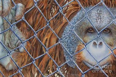 Orangutan Painting - Man Of The Forest by Greg and Linda Halom