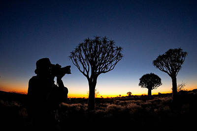 Man Photographing In Quiver Tree Forest Print by Panoramic Images