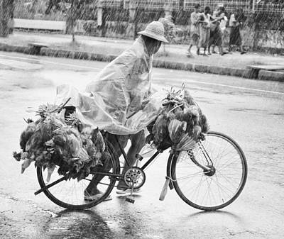 Rainy Day Photograph - Man Riding Bicycle Carrying Chickens by Stuart Corlett