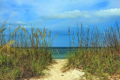 Manasota Key In June Print by Todd Carter