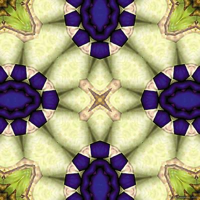 Contemplative Digital Art - Mandala 115 by Terry Reynoldson