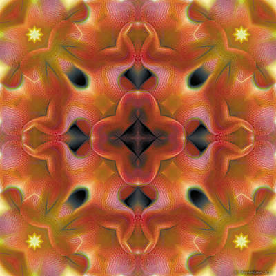 Mandala Digital Art - Mandala 125 by Terry Reynoldson