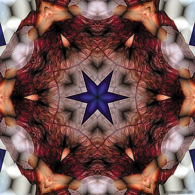 Mystical Digital Art - Mandala 14 by Terry Reynoldson