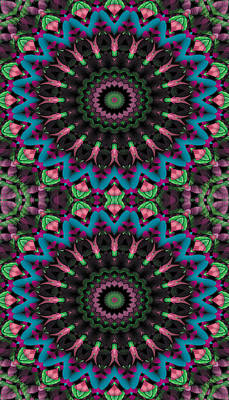 Cosmos Digital Art - Mandala 35 For Iphone Double by Terry Reynoldson