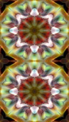 Symbolic Digital Art - Mandala 97 For Iphone Double by Terry Reynoldson