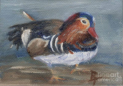 Brenda Brown Art Painting - Mandarin Duck Aceo by Brenda Thour