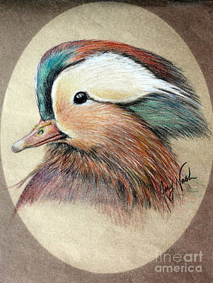 Mandarin Wood Duck Print by Joey Nash