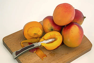 Mango Photograph - Mango - The Tropical Fruit by Mountain Dreams