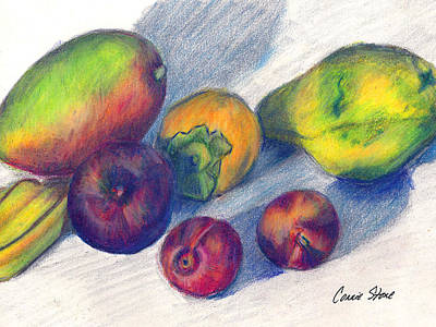 Mango Drawing - Mango And Plums by Connie Thomas
