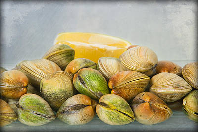 Food And Beverage Photograph - Manila Clams by Jay Hooker