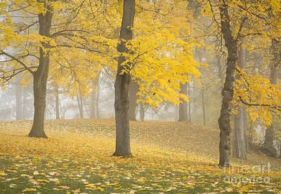 Manito Mists Print by Idaho Scenic Images Linda Lantzy