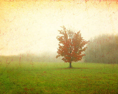 Red Photograph - Maple Tree In Fog With Fall Colors  by Brooke Ryan