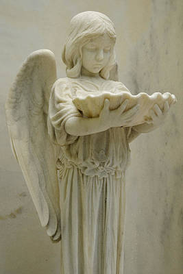 Savannah Photograph - Marble Angel With Scallop Shell by Bradford Martin