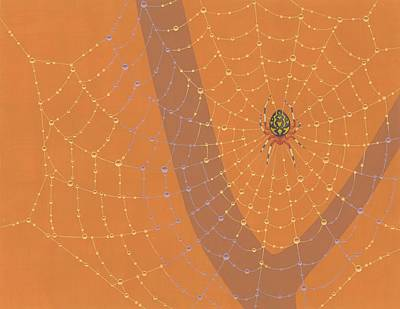 Web Painting - Marbled Orbweaver Spider by Nathan Marcy