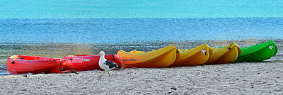Canoeing Photograph - March Of The Seagull by Christine Till