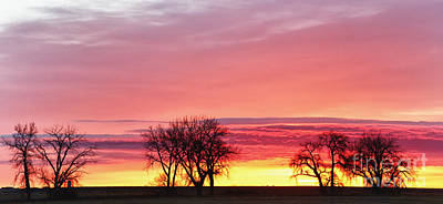 March Sunrise Panorama Print by James BO  Insogna