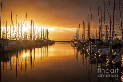 Marina Golden Sunset Print by Mike Reid
