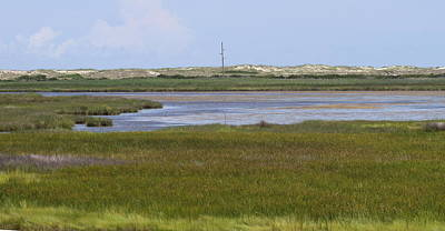 Seascape Photograph - Marsh At Bodie 3 by Cathy Lindsey