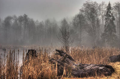 Fens Photograph - Marsh In Fog by Randy Hall
